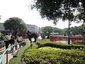 迪士尼樂園:迪士尼2012.JPG