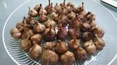 食材照片:黑蒜頭2.jpg