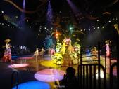 迪士尼樂園:迪士尼1029.JPG