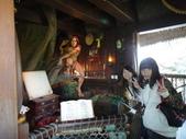 迪士尼樂園:中午2042.JPG