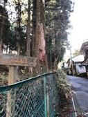 2019/12/8~13和歌山高野山丶熊野古道、姫路城:熊野古道小邊路
