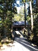 2019/12/8~13和歌山高野山丶熊野古道、姫路城:高野山奧之院