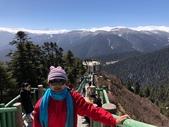 2019/04/5~12 西藏之旅:魯朗林海