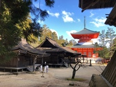2019/12/8~13和歌山高野山丶熊野古道、姫路城:金堂~根本大塔
