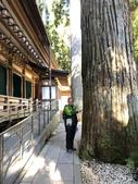 2019/12/8~13和歌山高野山丶熊野古道、姫路城:高野山燈籠堂