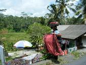Beauty in Bali 第一本:DSCF7906.JPG