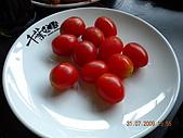 生日快樂:照片 047.jpg
