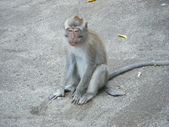 Beauty in Bali 第一本:DSCF7869.JPG