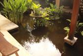 Beauty in Bali 第一本:IMG_3365.JPG