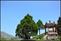 20140412石梯嶺步道+擎天崗環道+魚路古道-台北D7100:20140629三角山長坑山雙峰山員屯山D710052.jpg