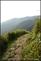 20140412石梯嶺步道+擎天崗環道+魚路古道-台北D7100:20140629三角山長坑山雙峰山員屯山D710034.jpg