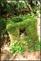 20140412石梯嶺步道+擎天崗環道+魚路古道-台北D7100:20140629三角山長坑山雙峰山員屯山D710061.jpg