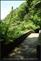 20140412石梯嶺步道+擎天崗環道+魚路古道-台北D7100:20140629三角山長坑山雙峰山員屯山D710059.jpg