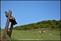 20140412石梯嶺步道+擎天崗環道+魚路古道-台北D7100:20140629三角山長坑山雙峰山員屯山D710042.jpg