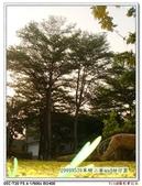 20090530單騎二寮and柑仔園-T20:nEO_IMG_20090530單騎二寮and柑仔園-T20 001.jpg