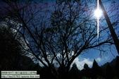 20091017.18谷關渡假ㄑ-景物系D70s:20091017.18谷關渡假ㄑ-D70s (30)_nEO_IMG.jpg