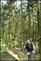 20140412石梯嶺步道+擎天崗環道+魚路古道-台北D7100:20140629三角山長坑山雙峰山員屯山D710036.jpg