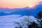 阿里山:3536890283_1cc65ecbc2.jpg