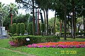 228=新公園:20080315 039.jpg