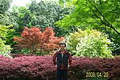 長江三峽黃山杭州:100_3968.JPG