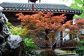 長江三峽黃山杭州:100_4012.JPG