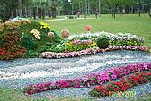 大安森林花展:照片 026.jpg