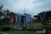 大安森林花展:照片 056.jpg