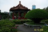 228=新公園:20080315 025.jpg