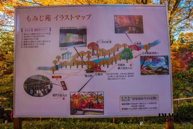 5N1C9239.jpg - 北野天滿宮,楓紅銀杏與藍天交織成的美景