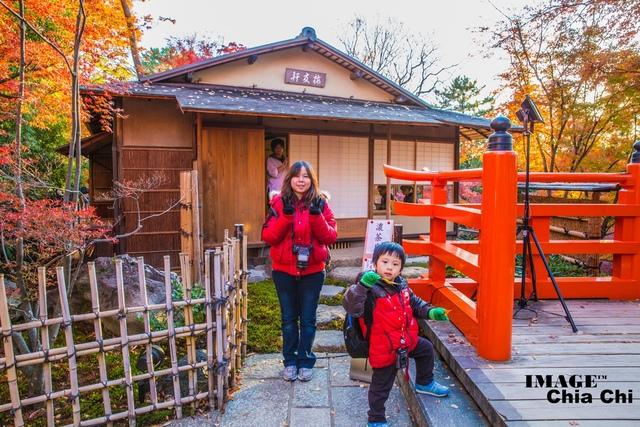 5N1C9350.jpg - 北野天滿宮,楓紅銀杏與藍天交織成的美景