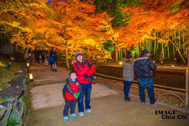 5N1C9615.jpg - 北野天滿宮,楓紅銀杏與藍天交織成的美景