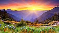 sunrise1.jpg - 留言板相簿 1