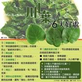 健康資訊:川七