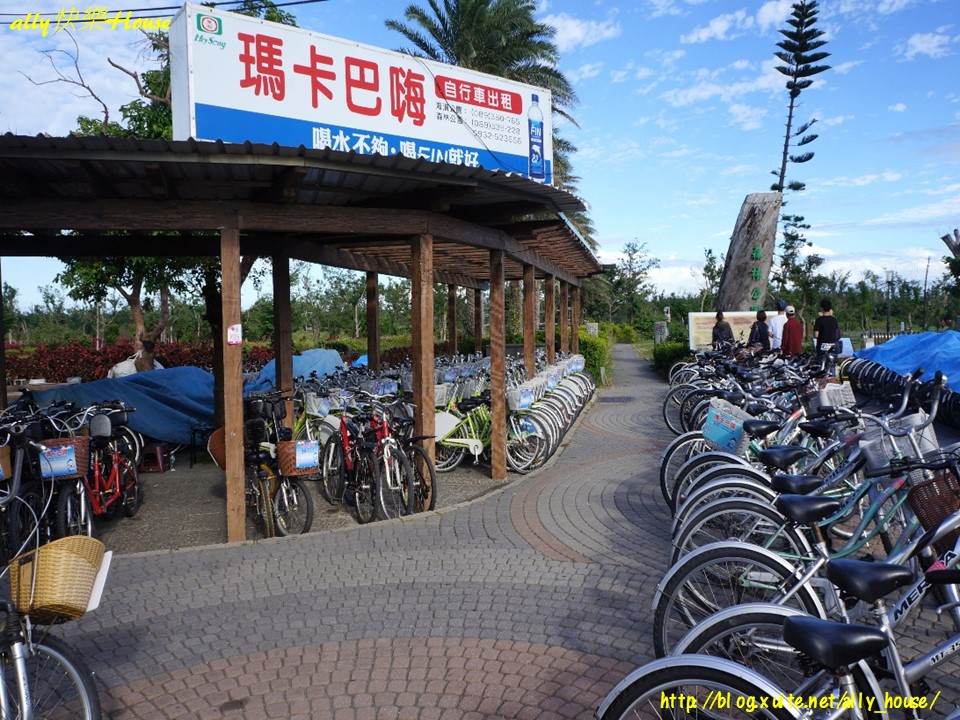105.12.19-21台東三日遊:105.12.20台東森林公園1.jpg