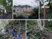 2015新年走春(2.19-2.21):104.2.19河美山親水步道4.jpg