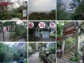 2015新年走春(2.19-2.21):104.2.21圓山風景區_親山步道10.jpg
