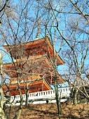 2018/01/09 京都清水寺:IMG20180109091307 清水寺 (58).jpg