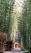 2018/01/09 京都清水寺:IMG_20180109_135928.jpg