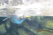 2012*10*16/17--秀傳墾丁之旅^^:12.10.16國立海洋生物博物館 (21).
