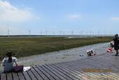 2013*06*23--天馬牧場&高美溼地^&^:13.06.23高美溼地 (1).JPG
