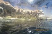 2012*10*16/17--秀傳墾丁之旅^^:12.10.16國立海洋生物博物館 (23).