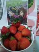 2013年 屬於源嫻的點滴^&^:13.03.07吃草莓.jpg