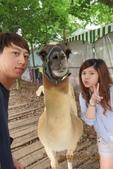 2013*06*23--天馬牧場&高美溼地^&^:13.06.23嫻嫻&嘉源 (13).JPG