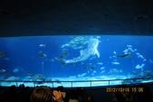 2012*10*16/17--秀傳墾丁之旅^^:12.10.16國立海洋生物博物館 (29).