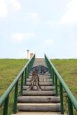 2015-06-09 蘆洲河堤彩繪階梯:IMG_3247.jpg