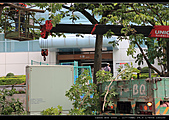2010-07-21 lab宜蘭一日遊:IMG_1076.jpg