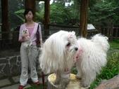 2006-04-23 東眼山森林遊樂區:P1000360