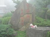 2006-04-23 東眼山森林遊樂區:P1000352