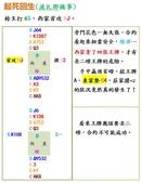 分隔:波札那橋事.jpg