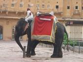 印度金三角之旅:印度 110.jpg